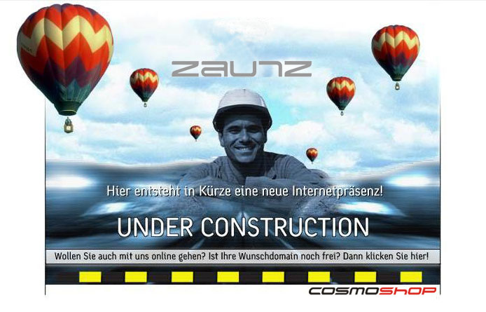 Zaunz Publishing. Internet Solutions.